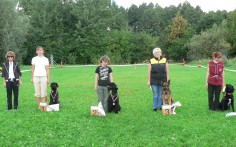 Obedience competition.